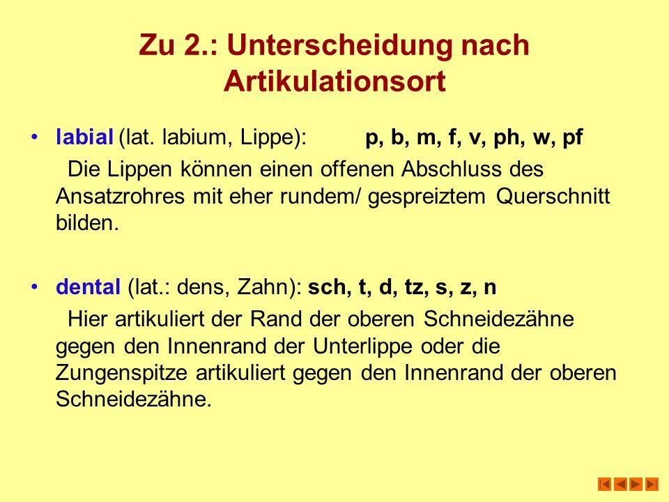 Zu 2.: Unterscheidung nach Artikulationsort