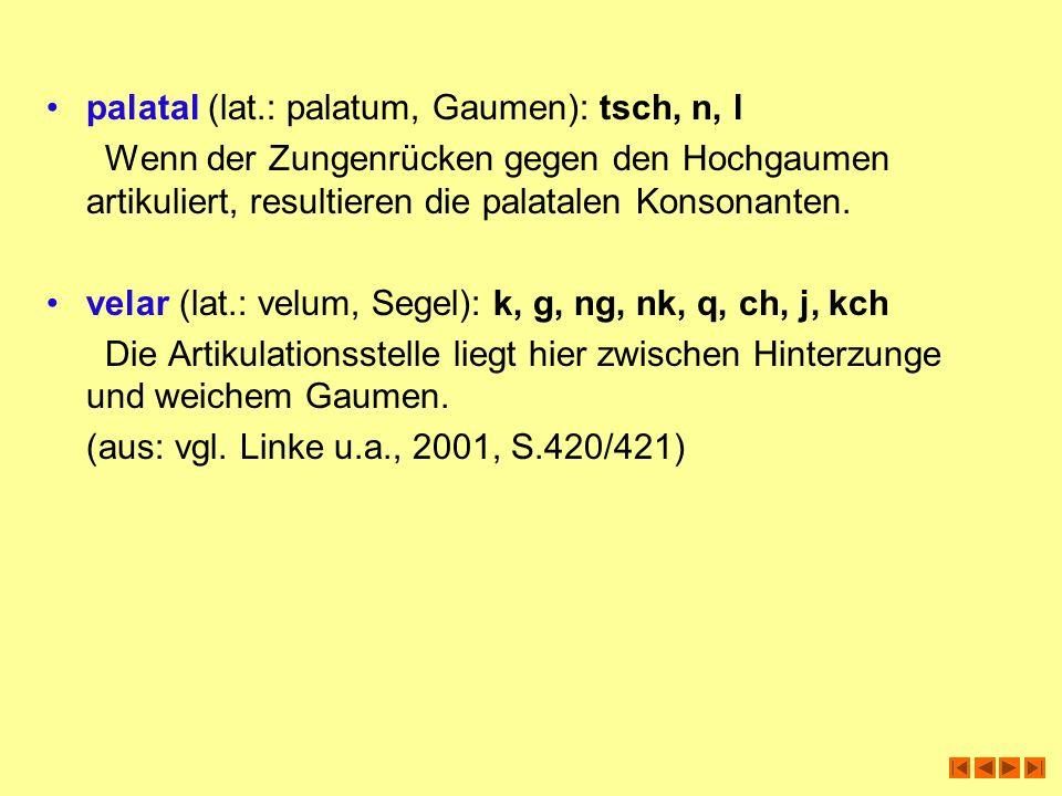 palatal (lat.: palatum, Gaumen): tsch, n, l