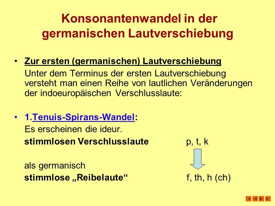 Konsonantenwandel in der germanischen Lautverschiebung