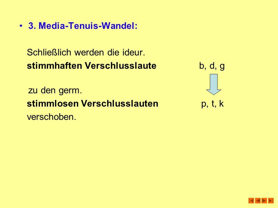 3. Media-Tenuis-Wandel: