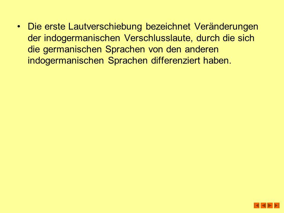 Die erste Lautverschiebung bezeichnet Veränderungen der indogermanischen Verschlusslaute, durch die sich die germanischen Sprachen von den anderen indogermanischen Sprachen differenziert haben.