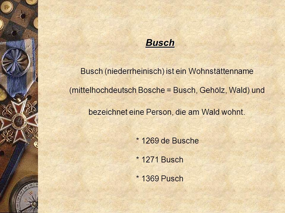 Busch Busch (niederrheinisch) ist ein Wohnstättenname (mittelhochdeutsch Bosche = Busch, Gehölz, Wald) und bezeichnet eine Person, die am Wald wohnt.