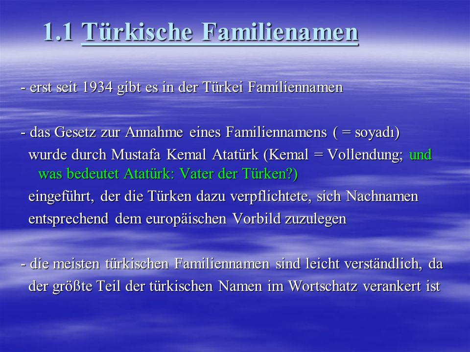 1.1 Türkische Familienamen