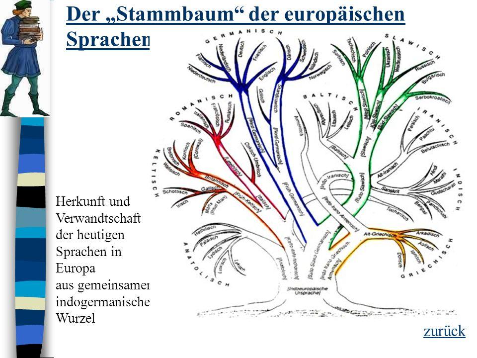"""Der """"Stammbaum der europäischen Sprachen"""