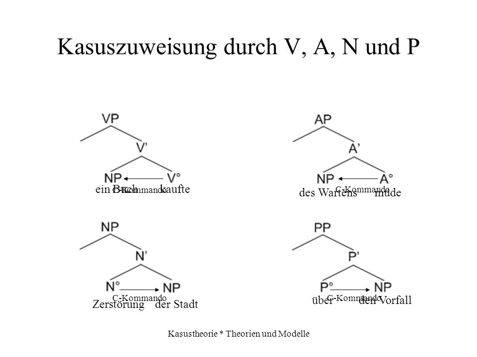Kasuszuweisung durch V, A, N und P