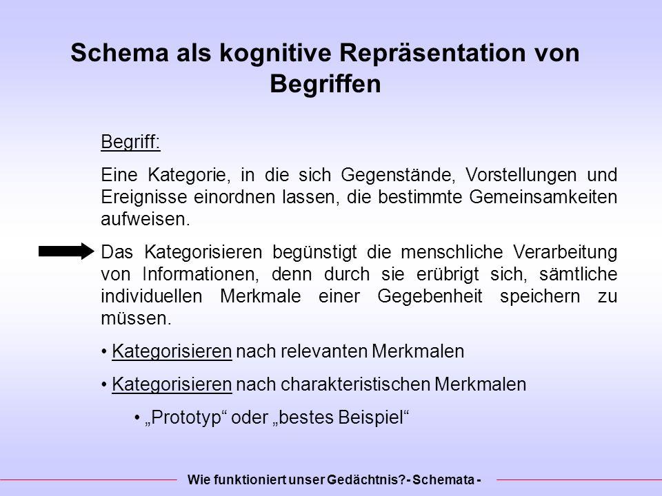 Schema als kognitive Repräsentation von Begriffen