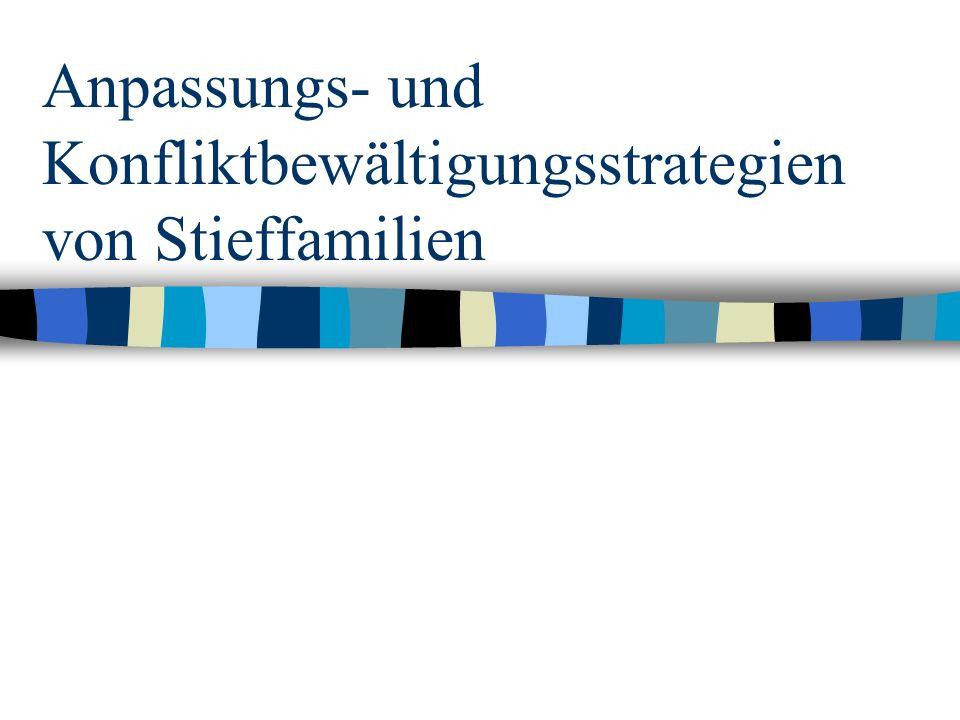 Anpassungs- und Konfliktbewältigungsstrategien von Stieffamilien