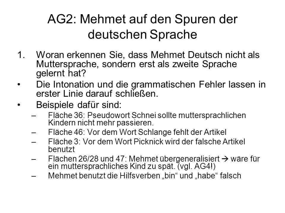 AG2: Mehmet auf den Spuren der deutschen Sprache