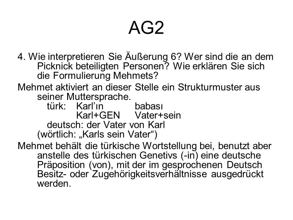 AG2 4. Wie interpretieren Sie Äußerung 6 Wer sind die an dem Picknick beteiligten Personen Wie erklären Sie sich die Formulierung Mehmets