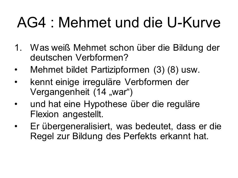 AG4 : Mehmet und die U-Kurve