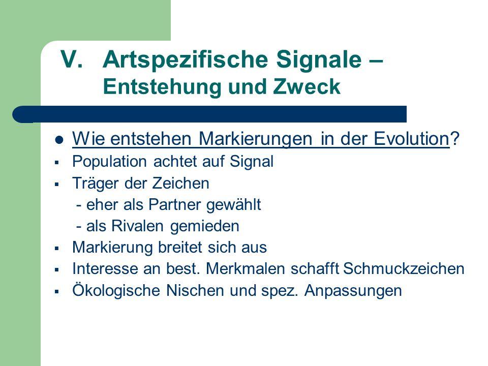 V. Artspezifische Signale – Entstehung und Zweck