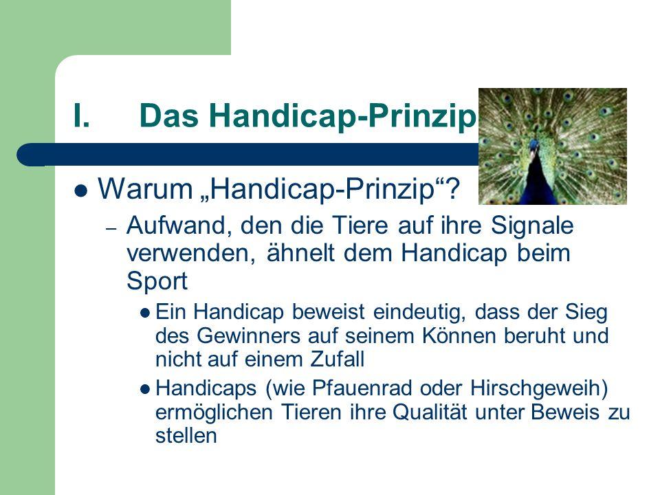 I. Das Handicap-Prinzip
