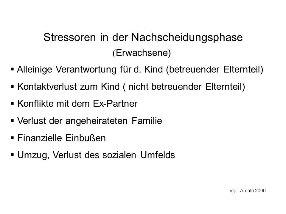 Stressoren in der Nachscheidungsphase