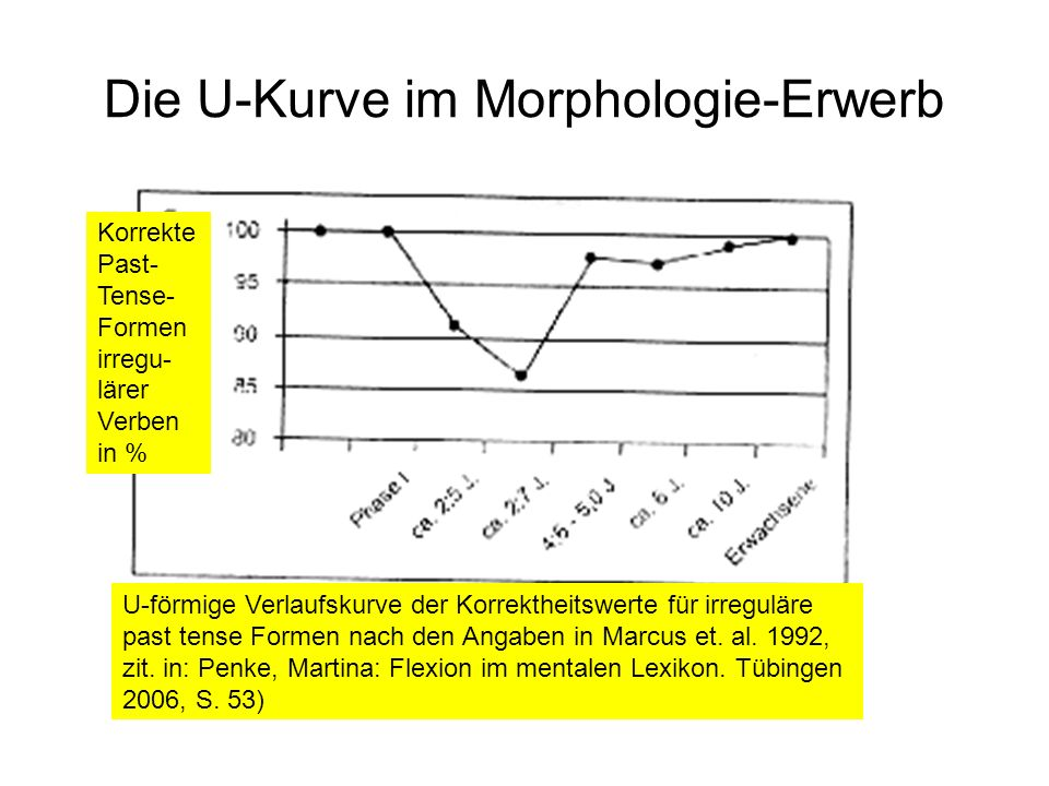 Die U-Kurve im Morphologie-Erwerb