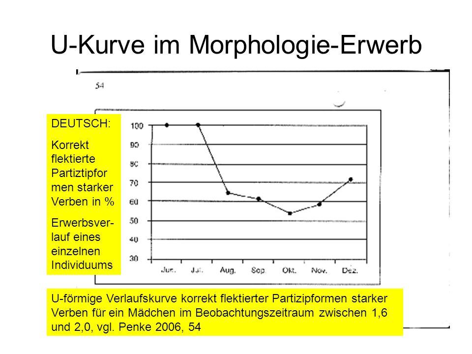 U-Kurve im Morphologie-Erwerb