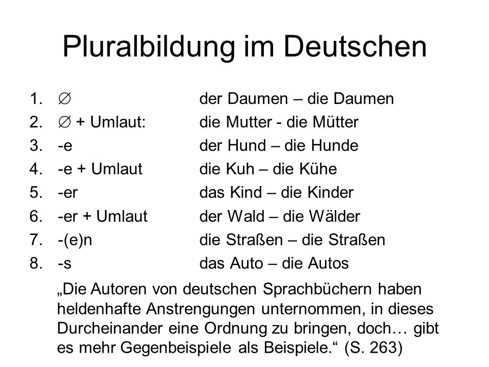 Pluralbildung im Deutschen