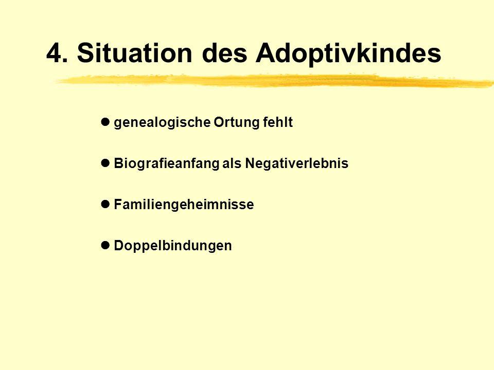 4. Situation des Adoptivkindes