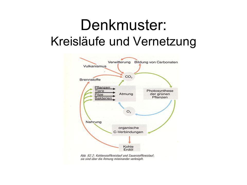 Denkmuster: Kreisläufe und Vernetzung