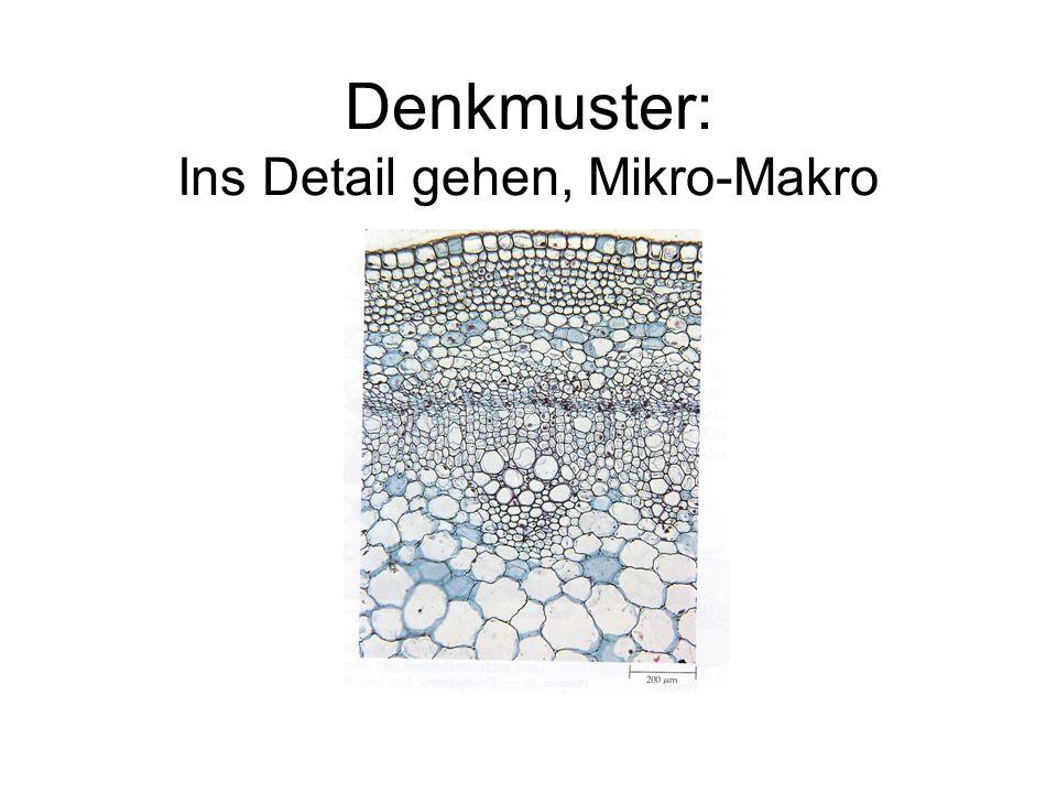 Denkmuster: Ins Detail gehen, Mikro-Makro