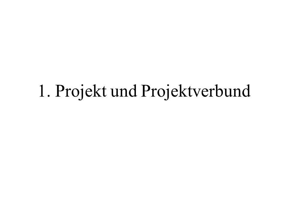 1. Projekt und Projektverbund