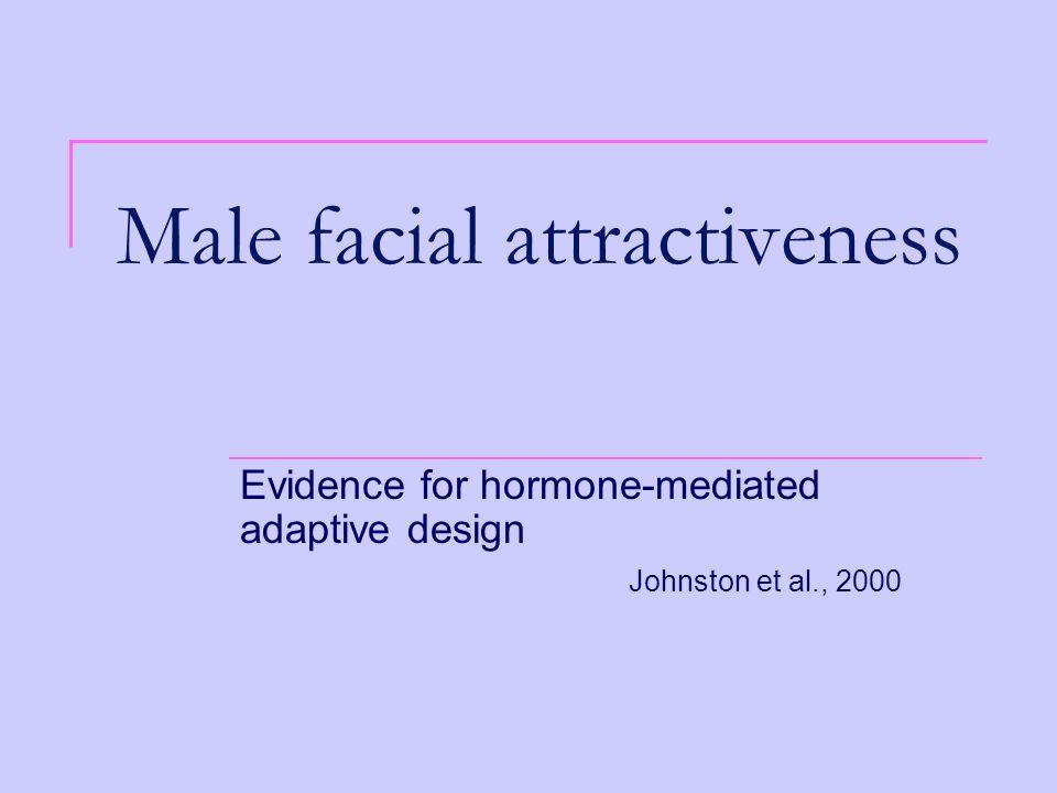 Male facial attractiveness