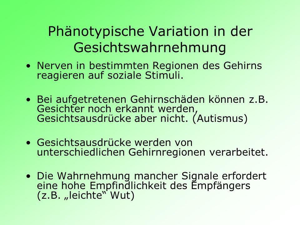 Phänotypische Variation in der Gesichtswahrnehmung