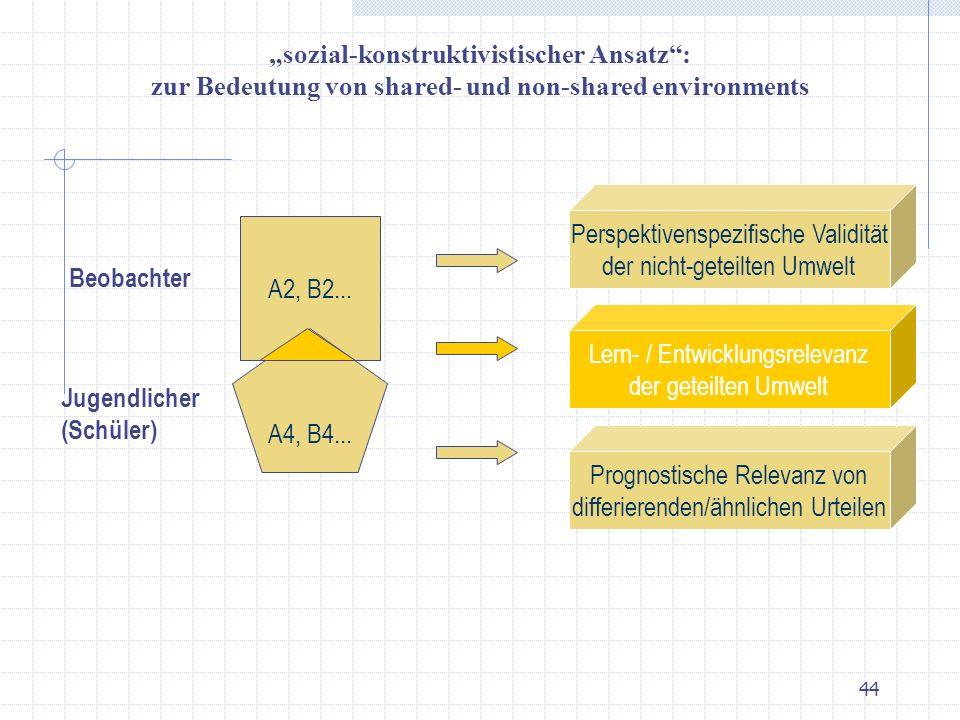 """""""sozial-konstruktivistischer Ansatz :"""