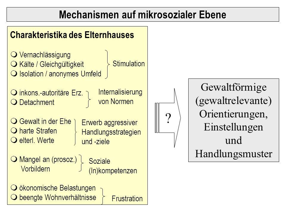 Mechanismen auf mikrosozialer Ebene