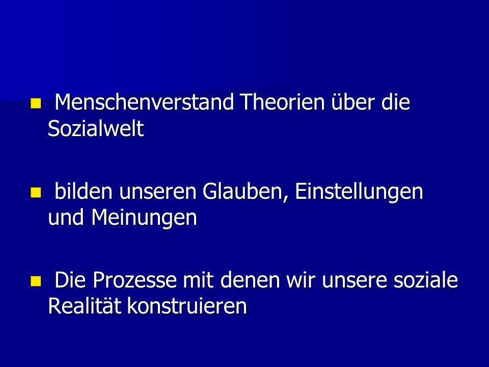 Menschenverstand Theorien über die Sozialwelt