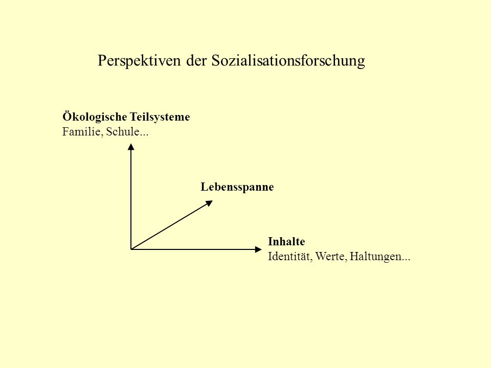 Perspektiven der Sozialisationsforschung