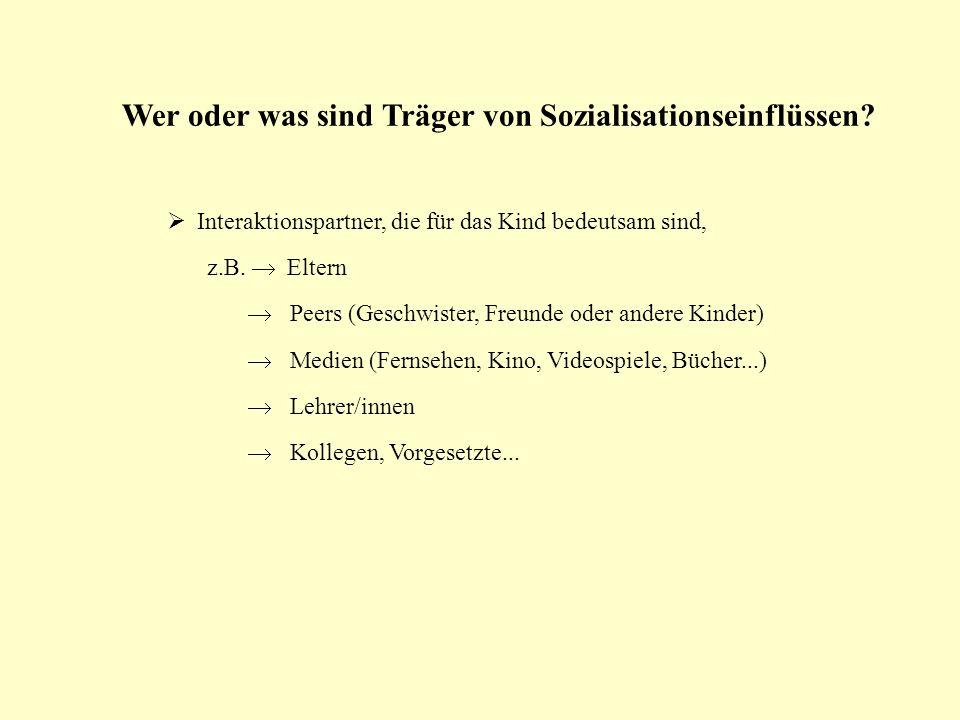 Wer oder was sind Träger von Sozialisationseinflüssen