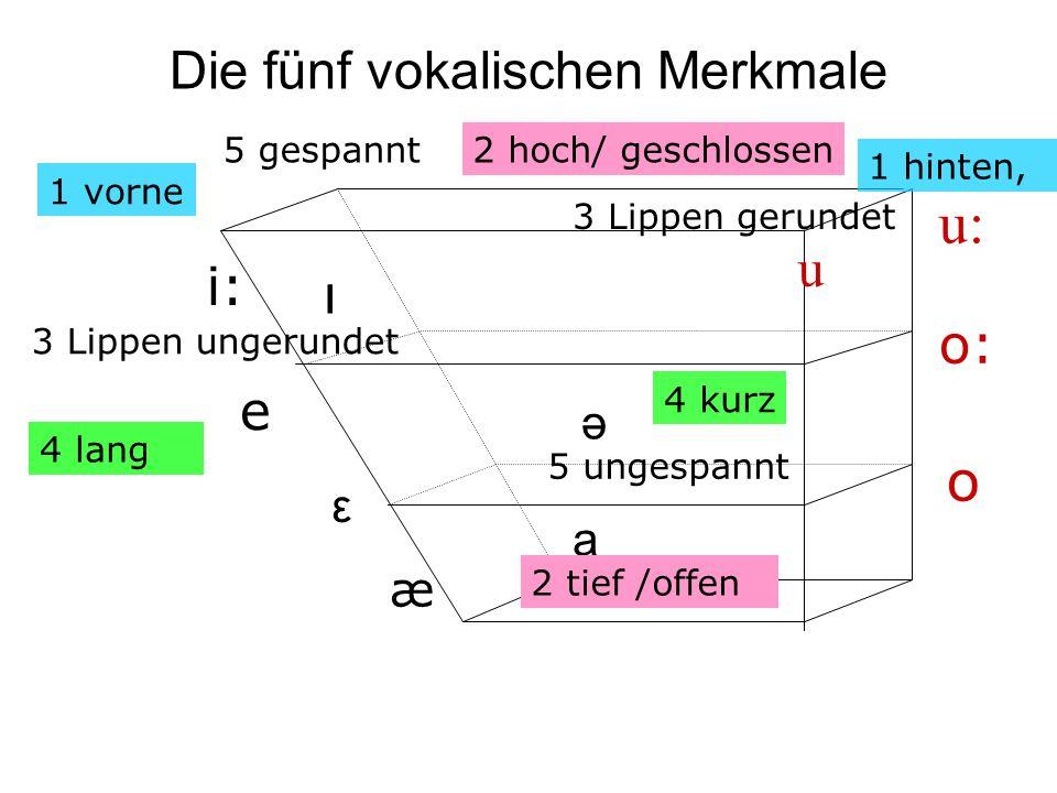 Die fünf vokalischen Merkmale
