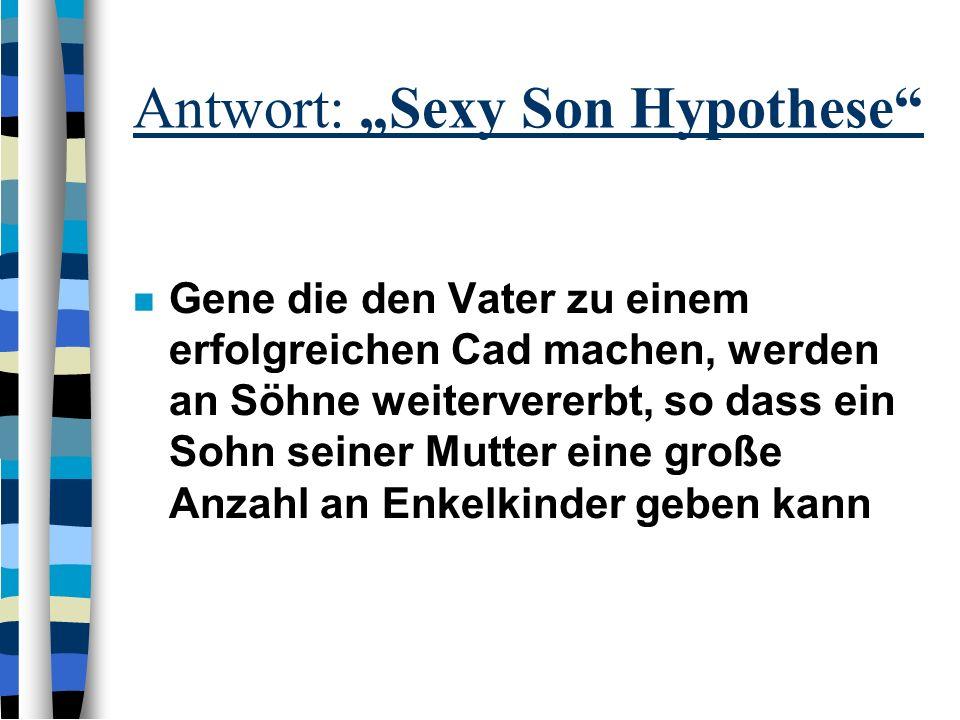 """Antwort: """"Sexy Son Hypothese"""