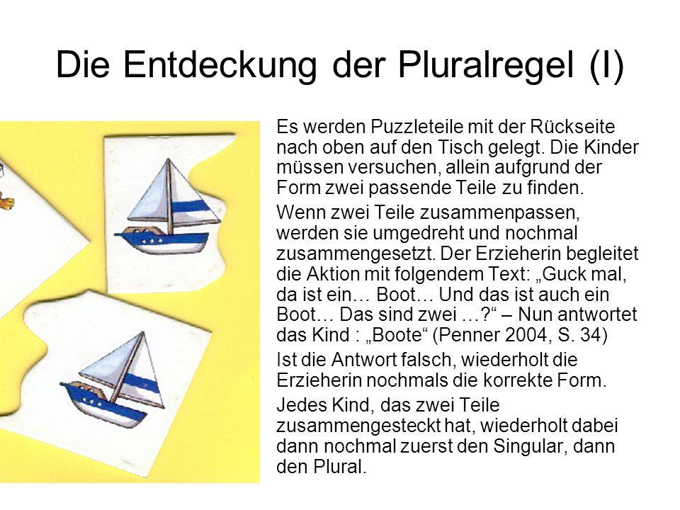 Die Entdeckung der Pluralregel (I)