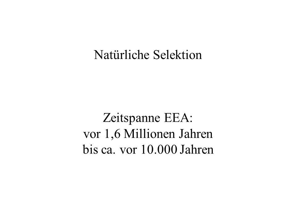 Natürliche Selektion Zeitspanne EEA: vor 1,6 Millionen Jahren bis ca