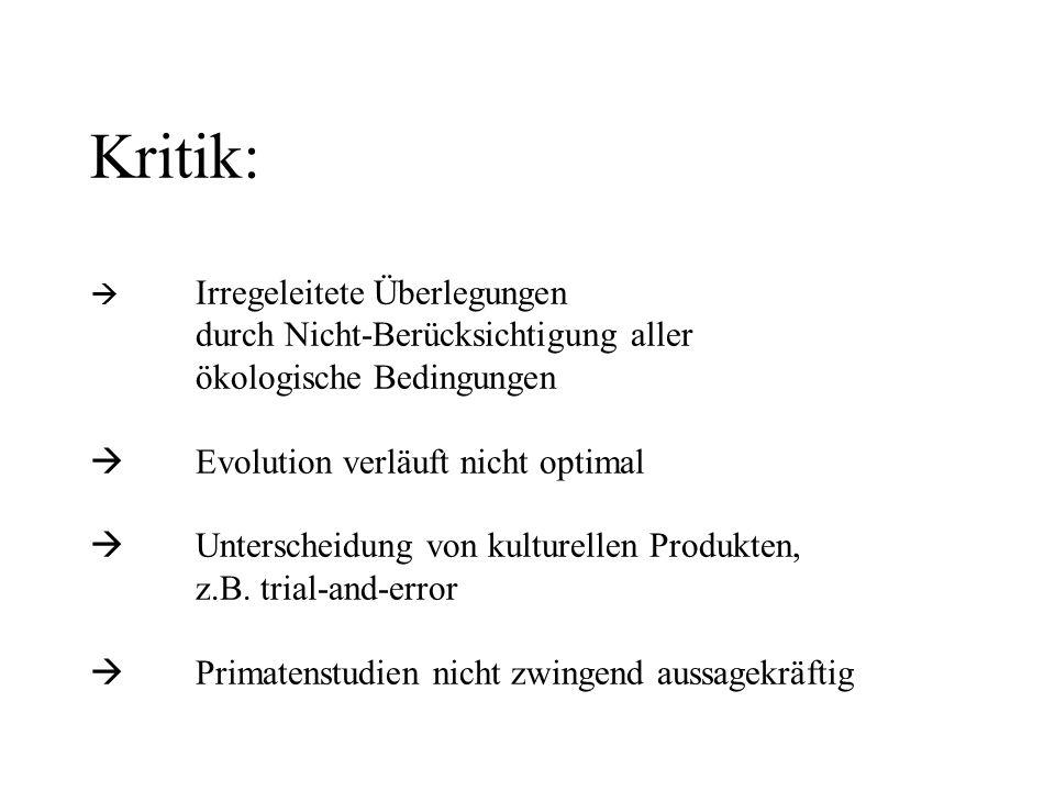Kritik: . Irregeleitete Überlegungen