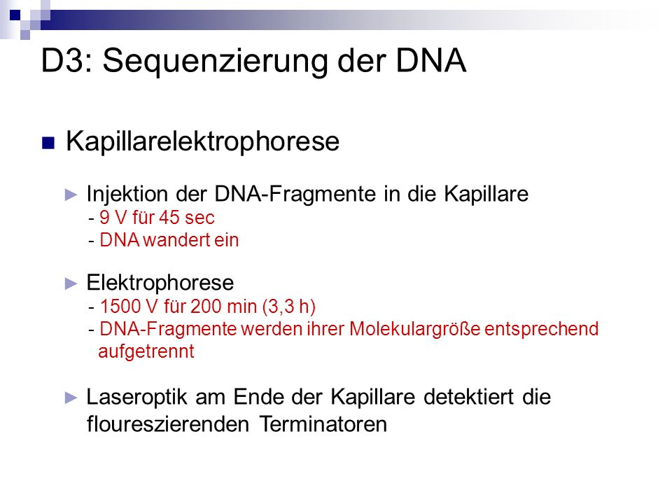 D3: Sequenzierung der DNA