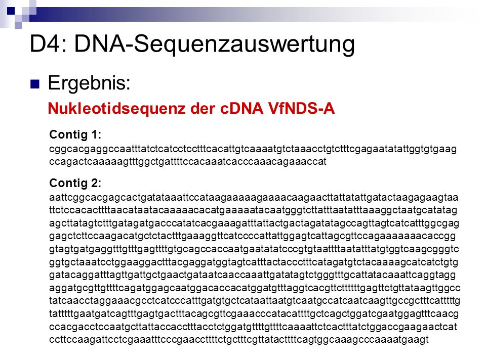 D4: DNA-Sequenzauswertung