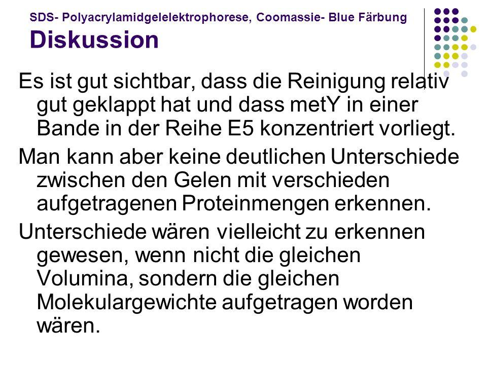SDS- Polyacrylamidgelelektrophorese, Coomassie- Blue Färbung Diskussion