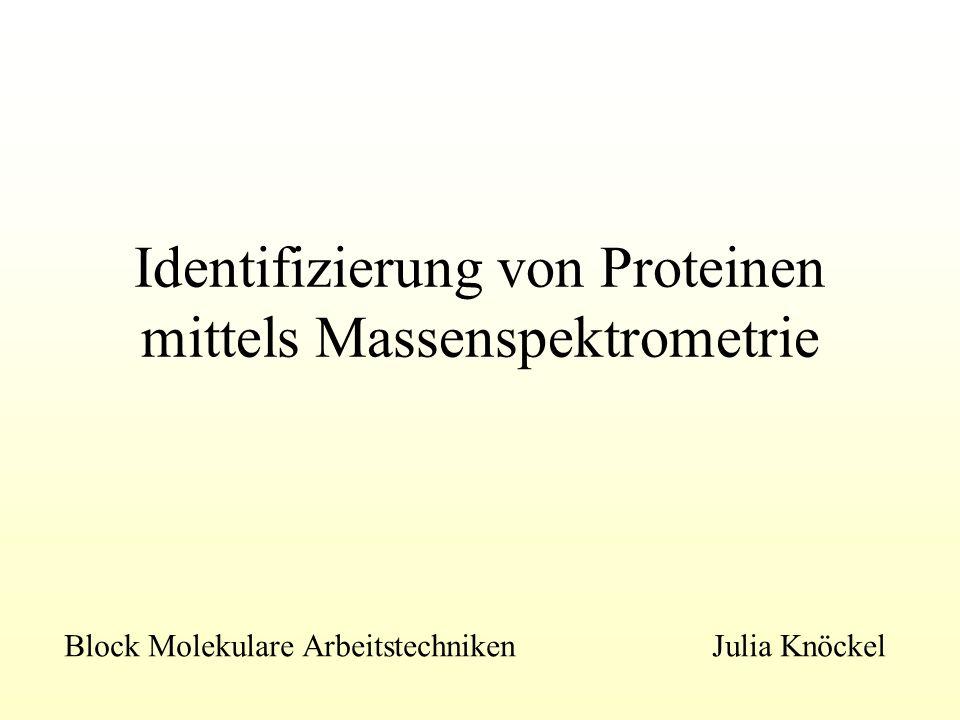 Identifizierung von Proteinen mittels Massenspektrometrie
