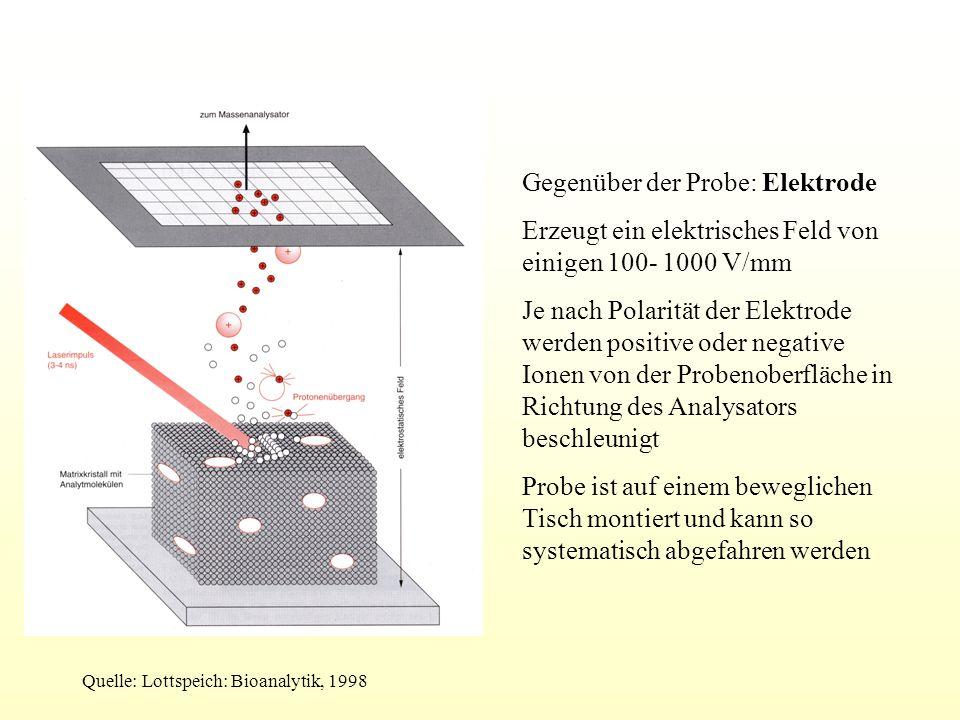 Gegenüber der Probe: Elektrode