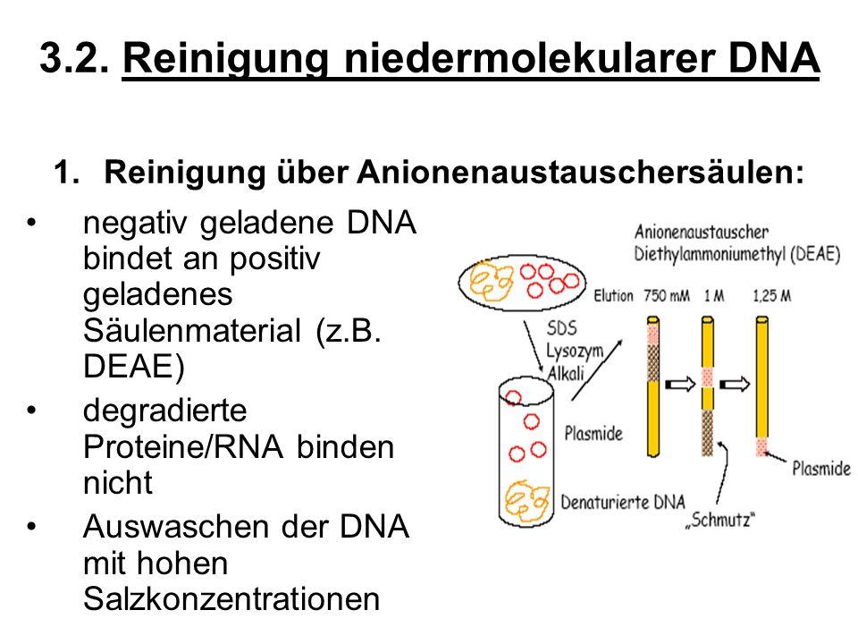 3.2. Reinigung niedermolekularer DNA