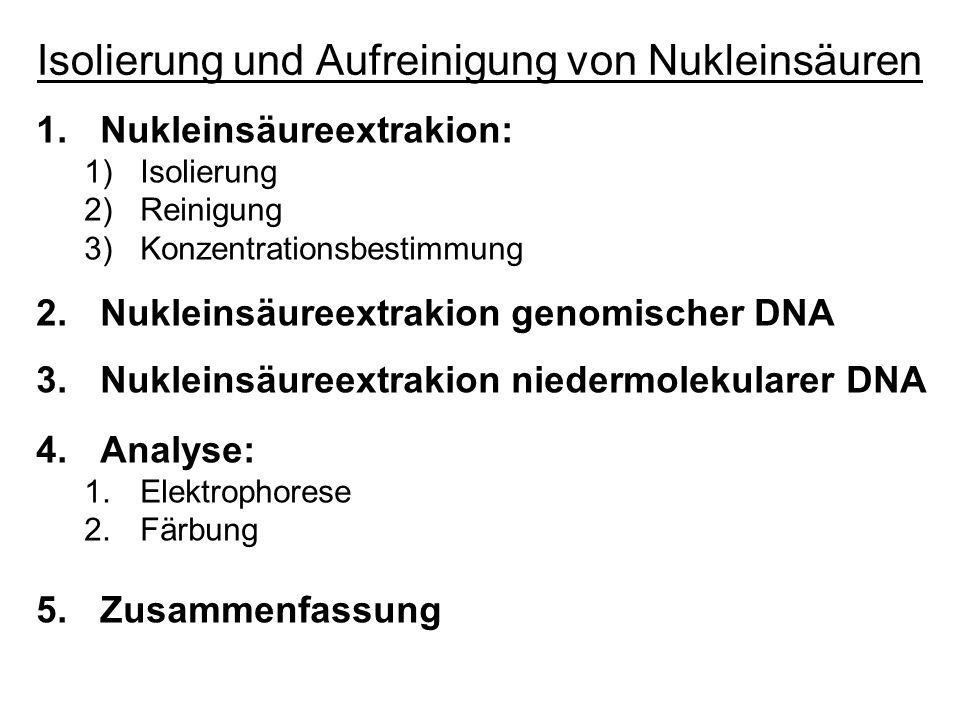 Isolierung und Aufreinigung von Nukleinsäuren