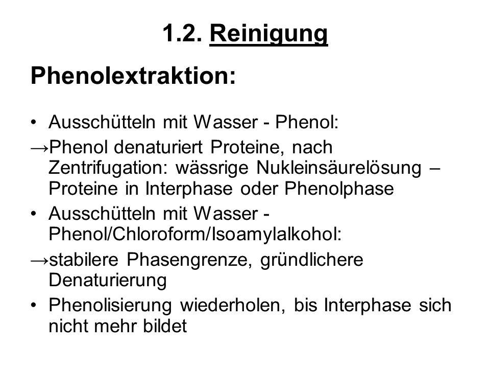 1.2. Reinigung Phenolextraktion: Ausschütteln mit Wasser - Phenol: