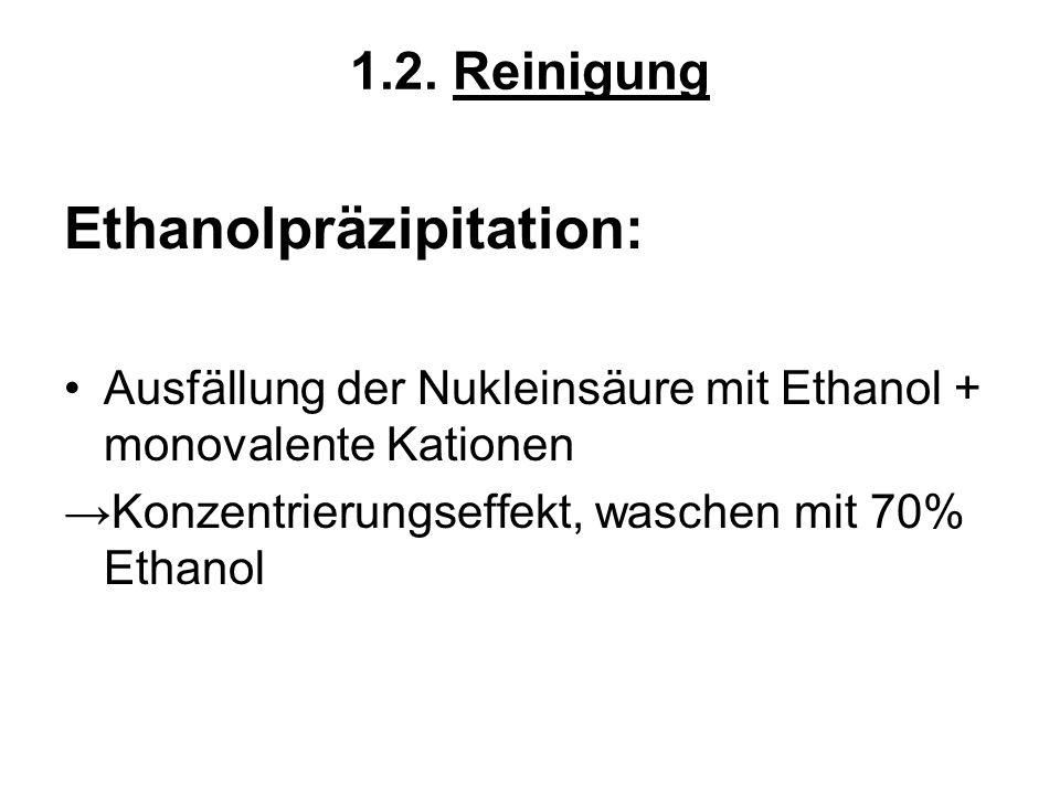 Ethanolpräzipitation: