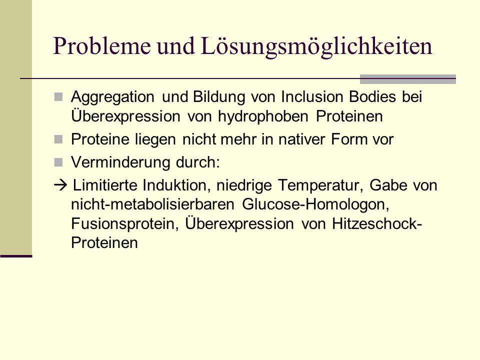 Probleme und Lösungsmöglichkeiten
