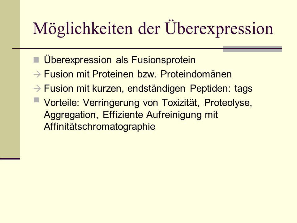 Möglichkeiten der Überexpression