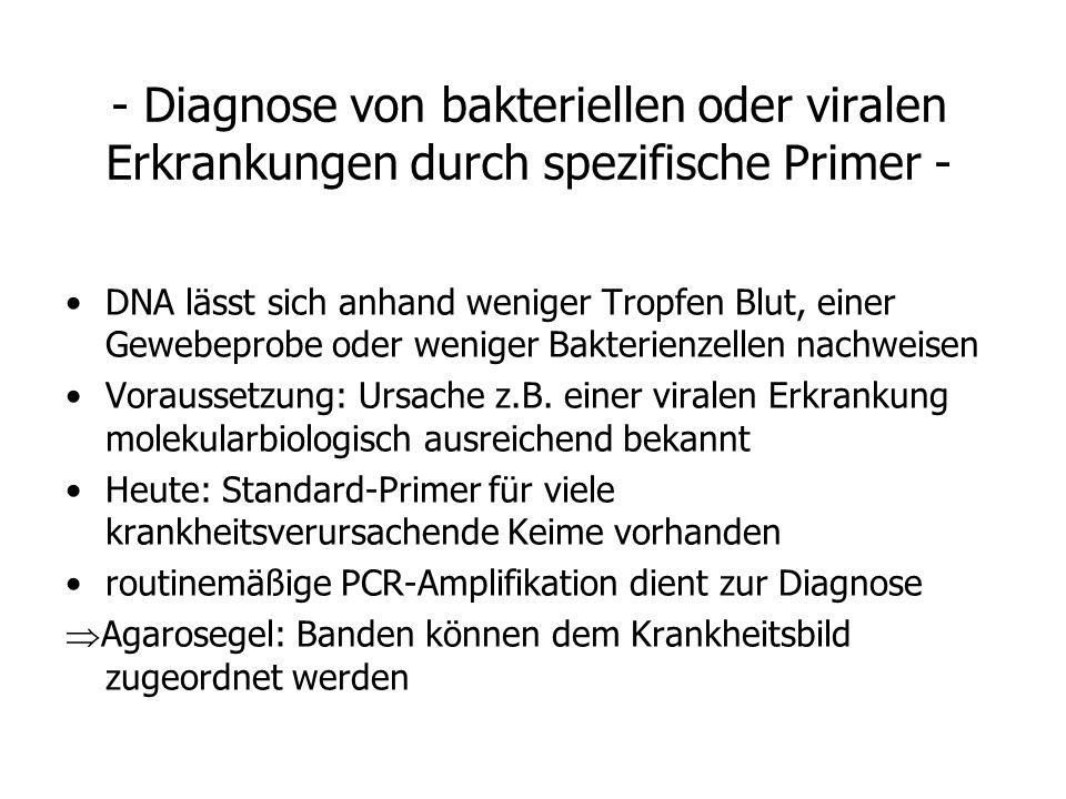 - Diagnose von bakteriellen oder viralen Erkrankungen durch spezifische Primer -