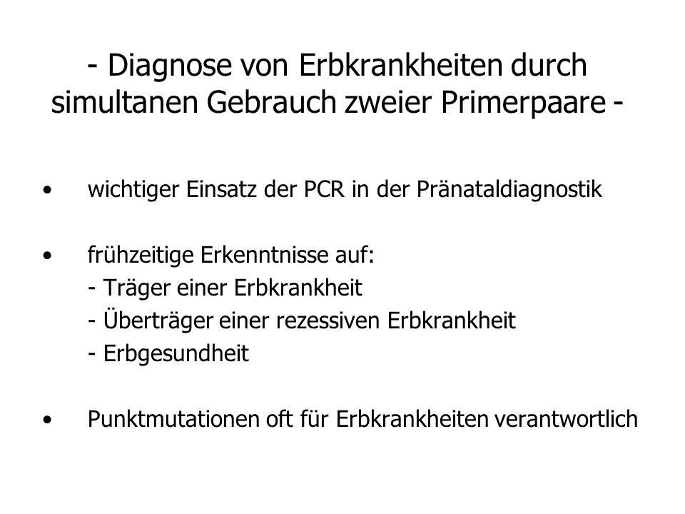 - Diagnose von Erbkrankheiten durch simultanen Gebrauch zweier Primerpaare -