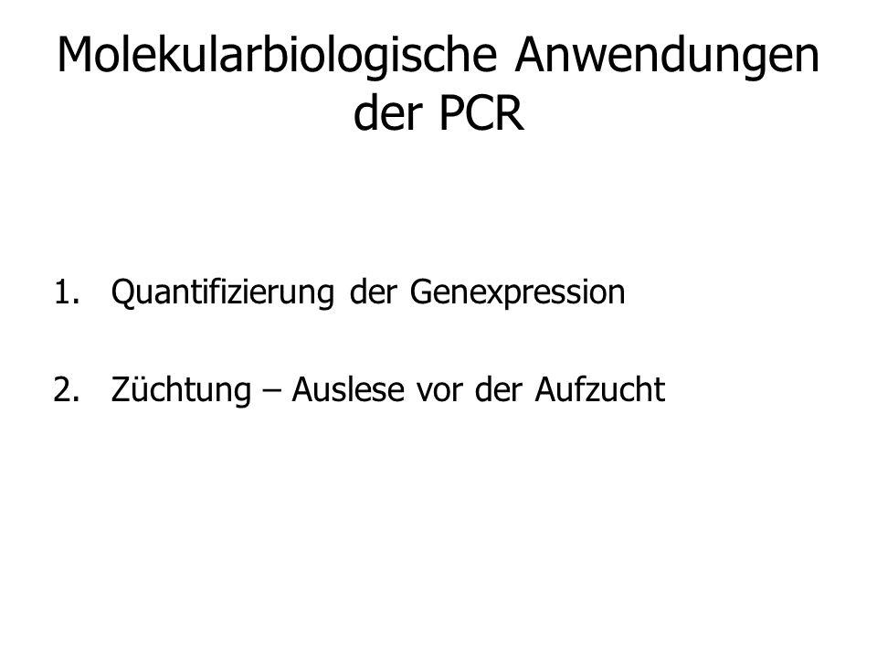 Molekularbiologische Anwendungen der PCR